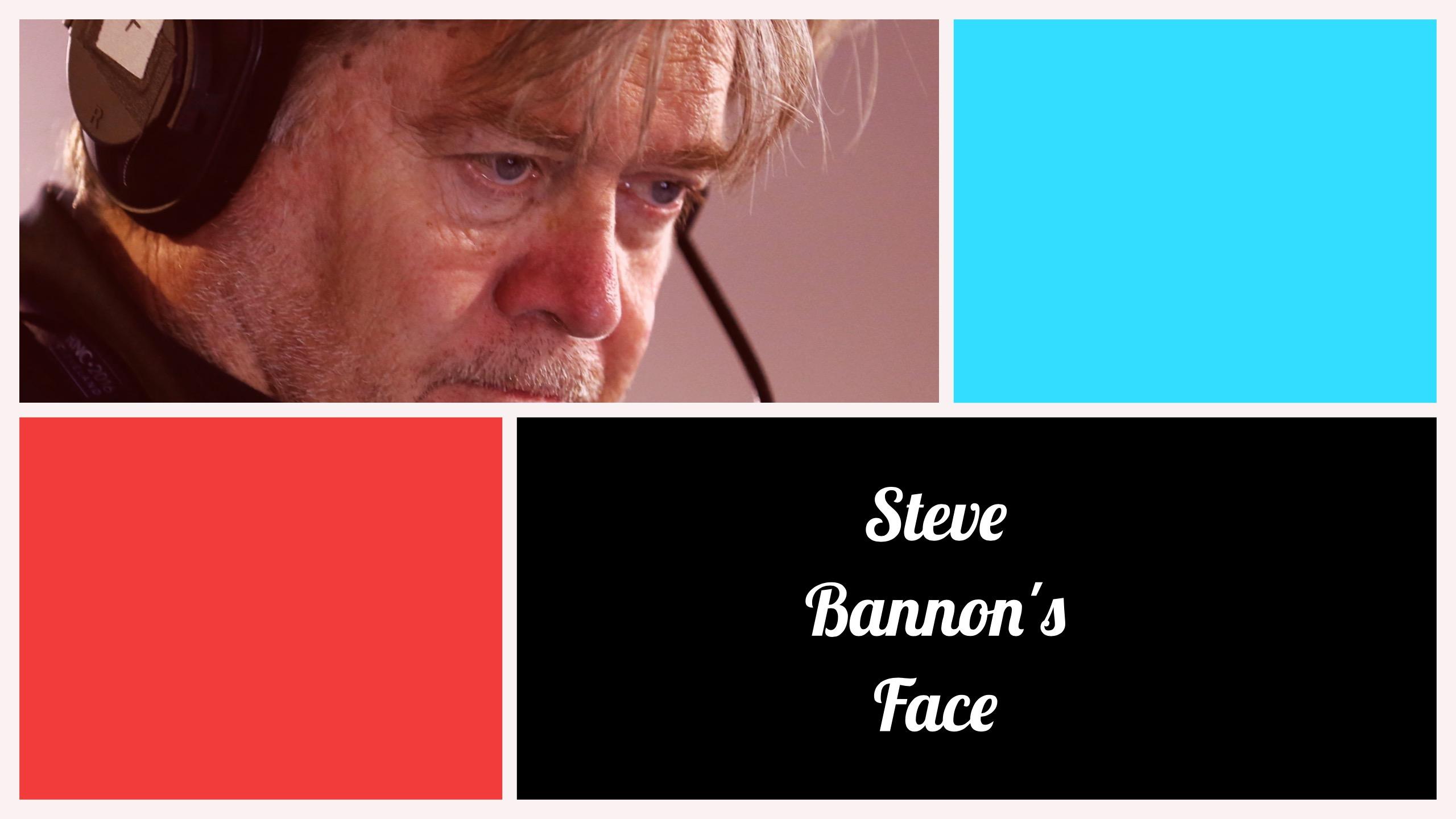 Steve Bannon's Face